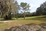 Big Pine Island Drive - Photo 2