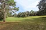 Big Pine Island Drive - Photo 3