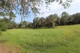 Big Pine Island Drive - Photo 6