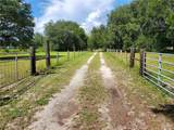26410 County Road 44A - Photo 12