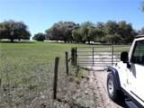 12447 County Road 561 - Photo 10