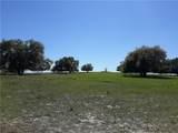 12447 County Road 561 - Photo 28