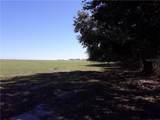 12447 County Road 561 - Photo 38
