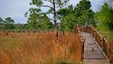 423 Long And Winding Road - Photo 3