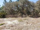 Sw Evergreen - Photo 3