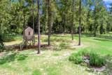 35739 Pinegate Trail - Photo 46