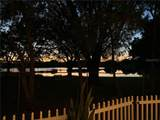 8408 Tangelo Tree Drive - Photo 4