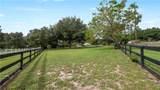 15919 Paddock Drive - Photo 39