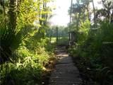 31230 Nocatee Trail - Photo 7