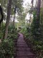 31230 Nocatee Trail - Photo 8