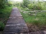 215 Stillbrook Trail - Photo 14