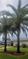 39 Seaside Drive - Photo 8
