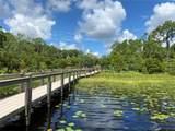 9225 Lake Mabel Drive - Photo 17