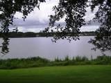 1460 Lake Shadow Circle - Photo 6