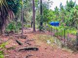 Kijik Trail - Photo 18