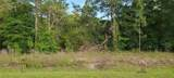 TBD Guava Lane Course - Photo 1