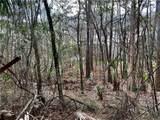 TBD Turkey Creek Drive - Photo 15