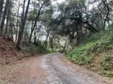 TBD Turkey Creek Drive - Photo 24
