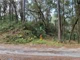 TBD Turkey Creek Drive - Photo 25