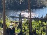 TBD Turkey Creek Drive - Photo 3