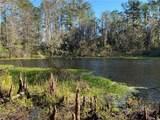TBD Turkey Creek Drive - Photo 6