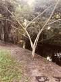 1288 Alligator Alley - Photo 10