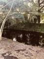 1288 Alligator Alley - Photo 11