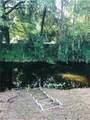 1288 Alligator Alley - Photo 8