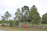 7511 Lake Hatchineha Road - Photo 2