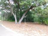 Pine Forest Drive - Photo 10