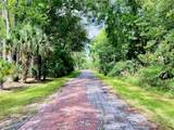 6518 Old Tampa Highway - Photo 5