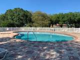 30861 Water Lily Drive - Photo 24