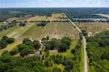 10427 Oak Canopy Lot 98 Junction - Photo 11