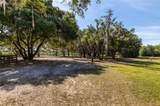 10427 Oak Canopy Lot 98 Junction - Photo 2