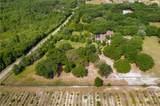 10427 Oak Canopy Lot 98 Junction - Photo 5