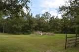 0 Palamino Lake Drive - Photo 2