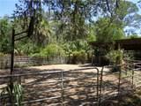 3216 Stagecoach Trail - Photo 2