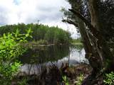 6500 Land O Lakes Boulevard - Photo 1