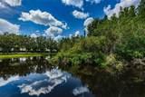 4223 Harbor Lake Drive - Photo 48