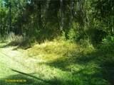 4515 Rainbow Drive - Photo 2