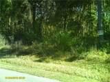 4515 Rainbow Drive - Photo 5