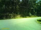 4515 Rainbow Drive - Photo 9