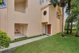 1620 Royal Palm Drive - Photo 6