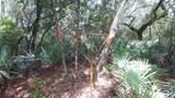 Hibiscus Lane - Photo 14