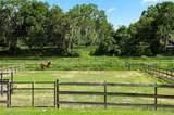1328 Spring Garden Ranch Road - Photo 46