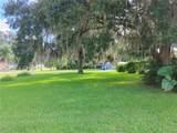 1704 Royal Palm Drive - Photo 6