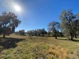 2230 Lost Pine Trail - Photo 60