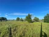 3243 Lugustrum Drive - Photo 6