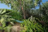 11111 Water Lily Way - Photo 49