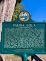 4115 Palma Sola Boulevard - Photo 48